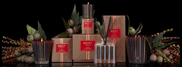 Nest Hearth Collection