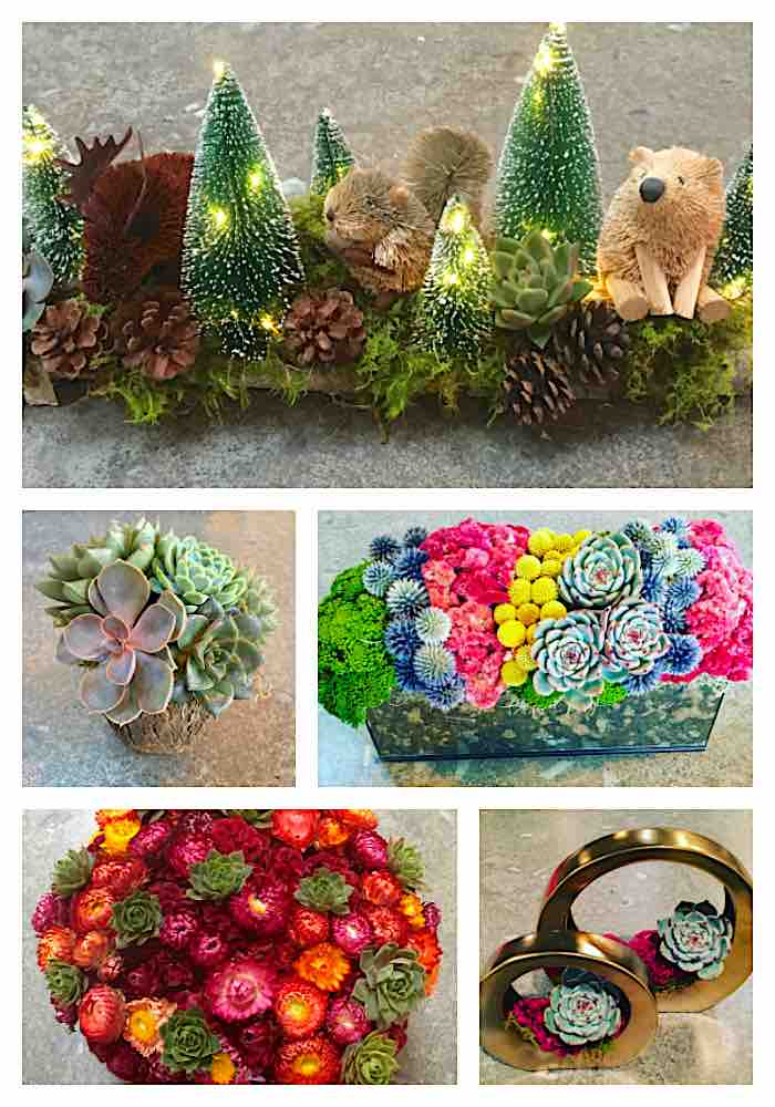Holiday Gift Ideas - Parkers Petals, Summit, NJ